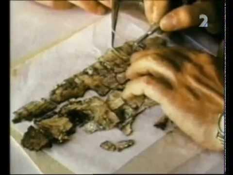 Veľké záhady: Záhada svitků od Mrtvého moře -dokument