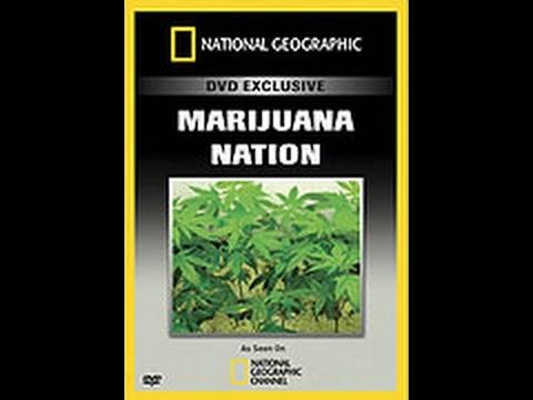 Historie Marihuany -dokument
