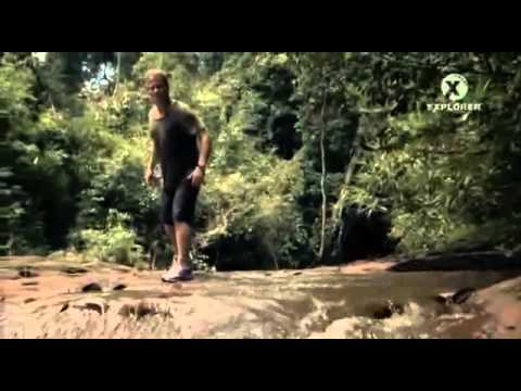 Zázraky (Miracles) – Zázrak v džungli -dokument