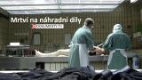 Mrtví na náhradní díly -dokument