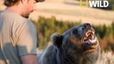 Říše grizzlyho -dokument