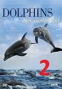 Delfíni očima špionážních kamer 2.část -dokument