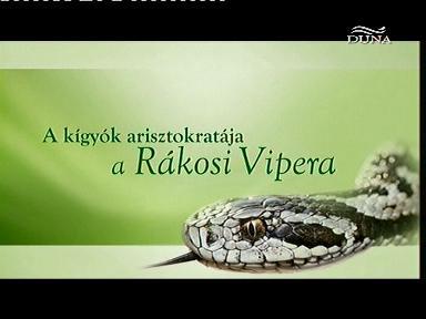 Aristokrat mezi hady -dokument