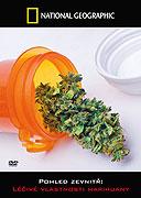 Pohled zevnitř: Léčivé vlastnosti marihuany -dokument