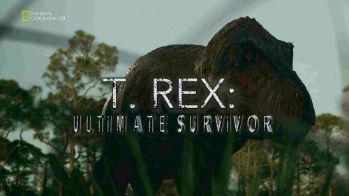 Tyranosaurus – mistr přežití -dokument
