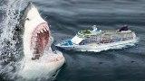 Megalodon: Obří superžralok žije -dokument