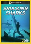 Šokující žraloci -dokument