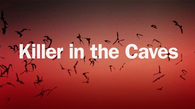 Zabiják netopýrů -dokument