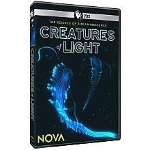 Svět světélkujících tvorů -dokument