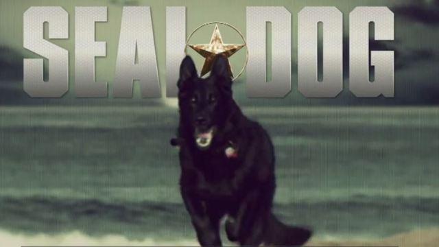 Psí vojáci -dokument
