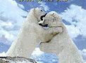 Aljaška: Duch divočiny -dokument