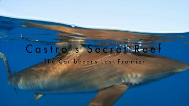 Tajný kubánský útes / Castro's Secret Reef -dokument