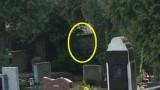 Svědci paranormálních jevů – Návštěvníci -dokument