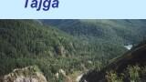 Tajga -dokument