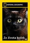 Ze života koček -dokument