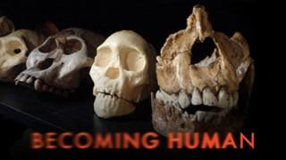Evoluce: Příběh člověka / část 2 -dokument