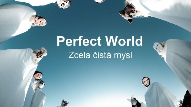 Perfect World: Zcela čistá mysl -dokument
