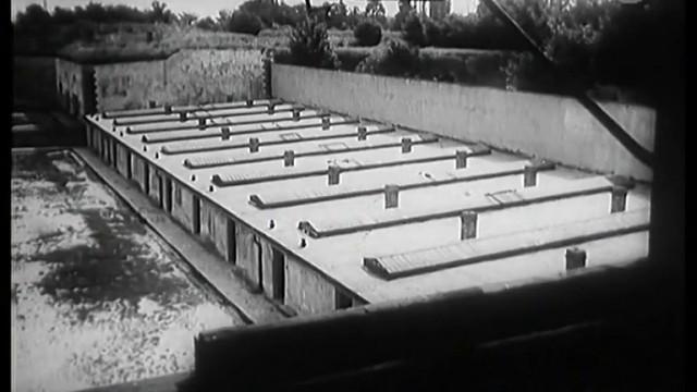 Zpráva o Terezíně -dokument