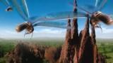 Válka termitů -dokument