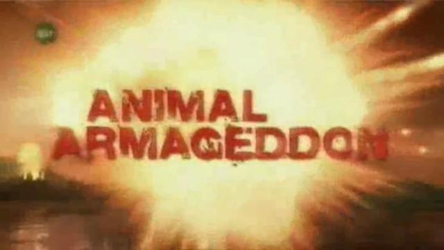 Armagedon zvířecí říše – díl 6 – Panika v oblacích -dokument