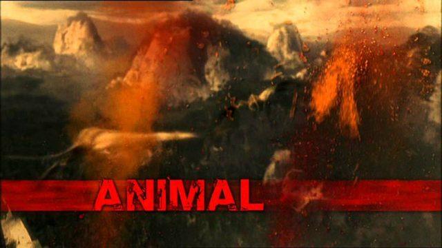 Armagedon zvířecí říše – díl 4 – Udušení -dokument