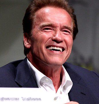 Tváří v tvář: Arnold Schwarzenegger -dokument