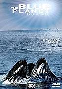Modrá planeta – Historie oceánů / část 6: Koralova more –dokument