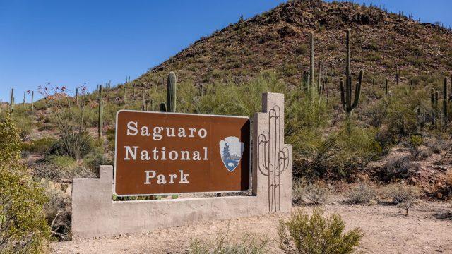 Americké národní parky: Národní park Saguaro -dokument