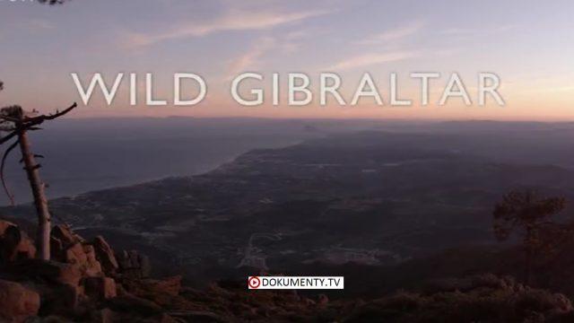 Divoký Gibraltar -dokument