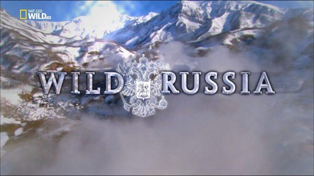 Ruská divočina: Sibiř -dokument