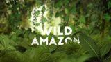 Divoká Amazonie / část 2: Nespoutaný svět –dokument