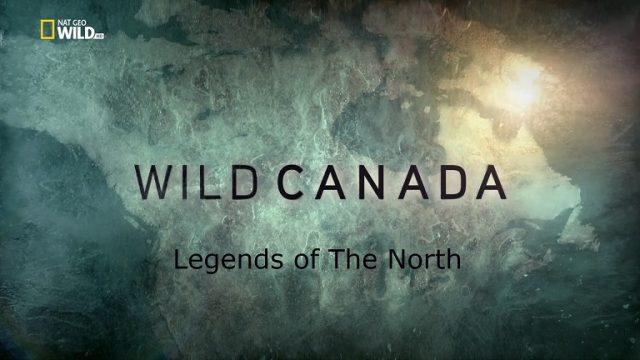 Divoká Kanada: Legendy severu -dokument