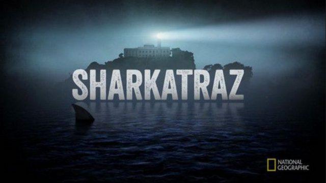 Žraloci u Alcatrazu -dokument