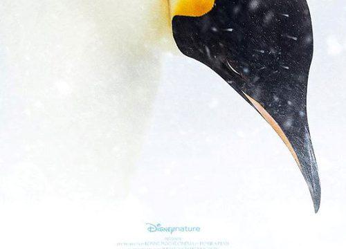 Putování tučňáků: Volání oceánu -dokument