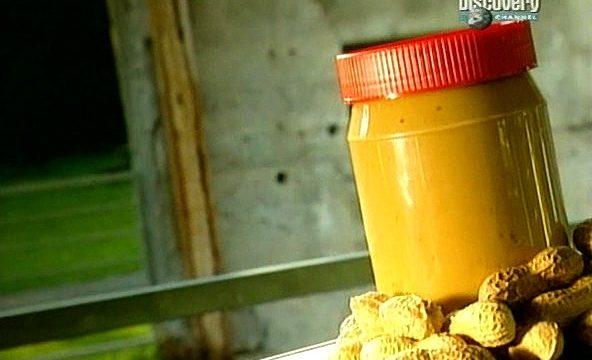 Jak se co dělá: Burákové máslo -dokument
