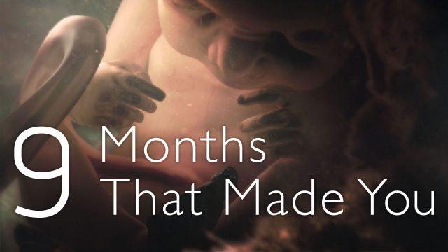 Záhadných devět měsíců / díl 3: Závěrečné odpočítávání  –dokument