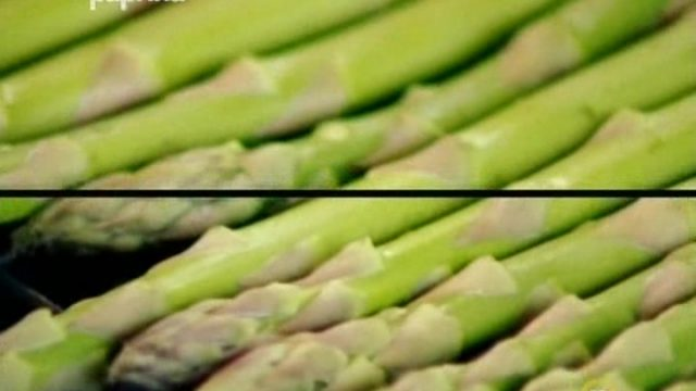 Jamie Dělá minutky: Britsky piknik -dokument