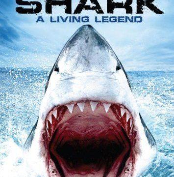 Velký bílý žralok -dokument