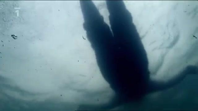 Přežít! : Ztracený v oceánu -dokument