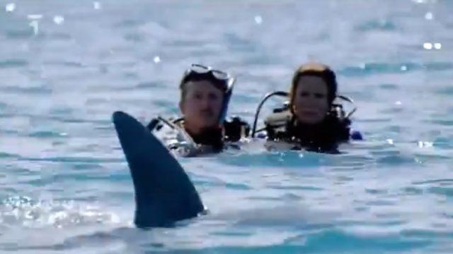 Přežít! : Nebezpečný ponor -dokument