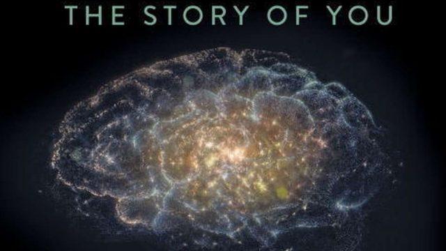 Cesta do hlubin mozku / 1.díl: Co je skutečnost -dokument