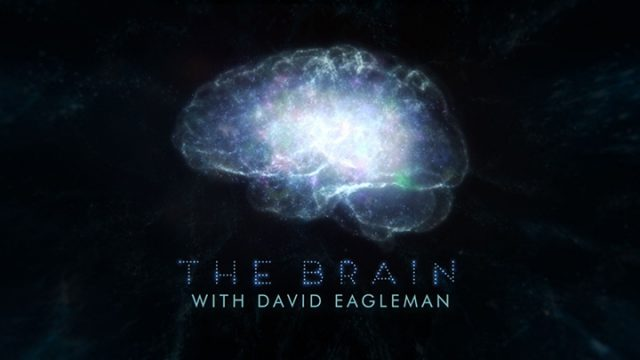 Cesta do hlubin mozku / 3.díl: Kdo nás ovládá -dokument