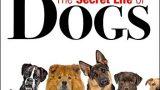 Tajný život psů -dokument