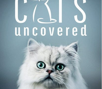 Tajemné kočky (komplet 1-3) -dokument