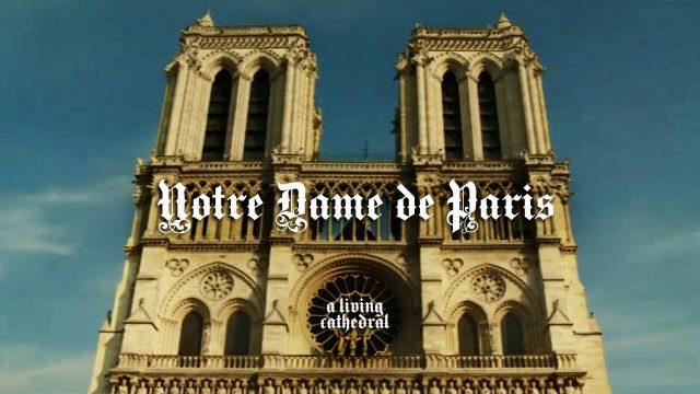 Katedrála Notre Dame -dokument