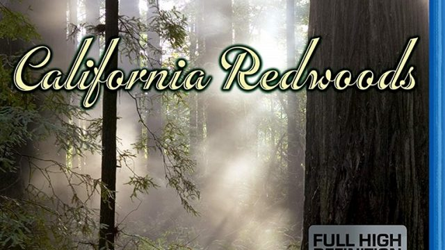 Living Landscapes:  Earthscapes – California Redwoods -dokument