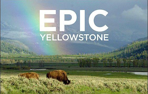 Impozantní Yellowstone  (komplet 1-4) -dokument