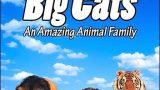 Velké kočky: Úžasná zvířecí rodina (komplet 1-2) -dokument