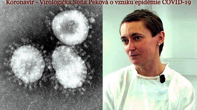 Coronavirus – o vzniku epidemie COVID-19 -dokument