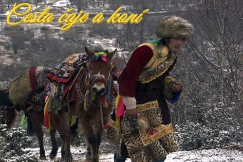 Cesta čaje a koní (komplet 1-3) -dokument